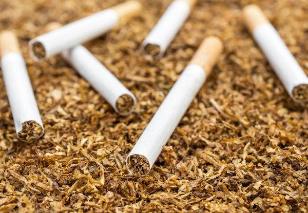 レギュラータバコ