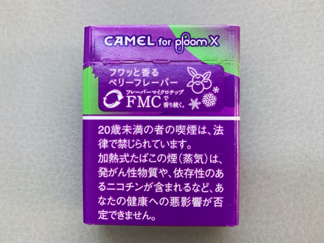 キャメルパープル3