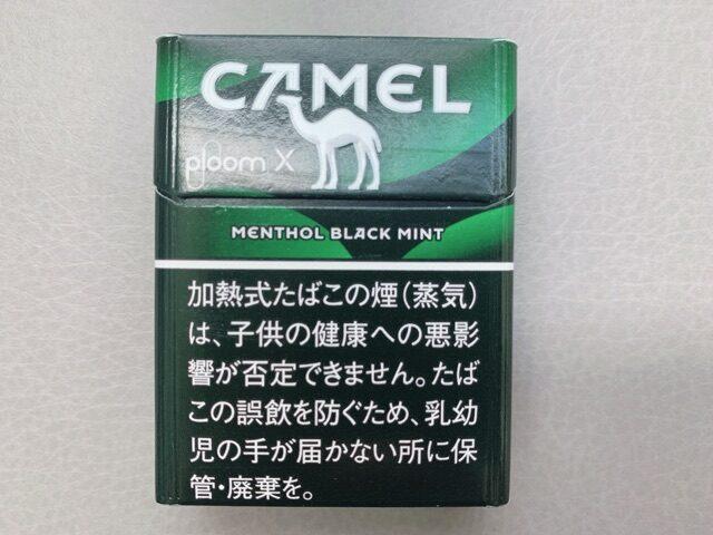 キャメルブラックミント1