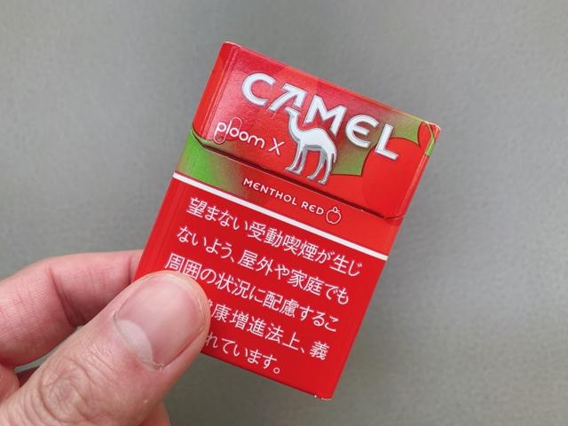 キャメルレッド6